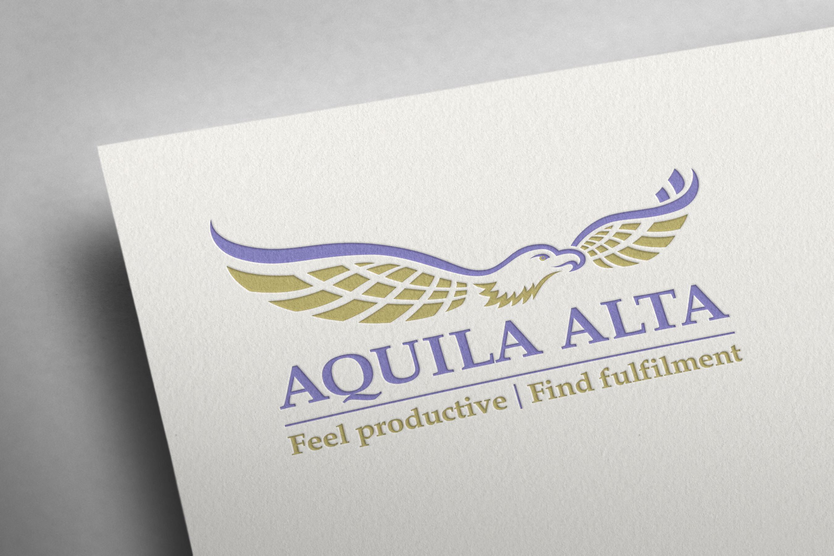 Aquila Alta productivity Logo and branding campaign in Canterbury NZ