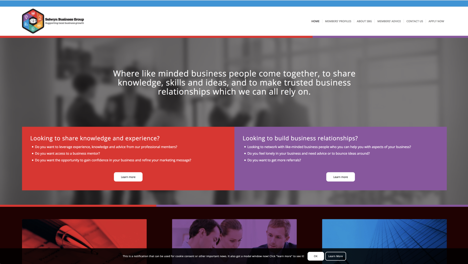 Selwyn Business Group (SBG) New Zealand website design and development with bold colours symbolizing a variety of business types and categories in our local business networking group